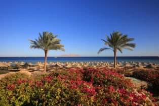 Exploring Sharm El Sheikh